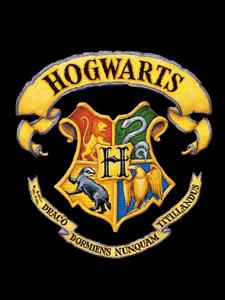 Harry Potter crest for front door