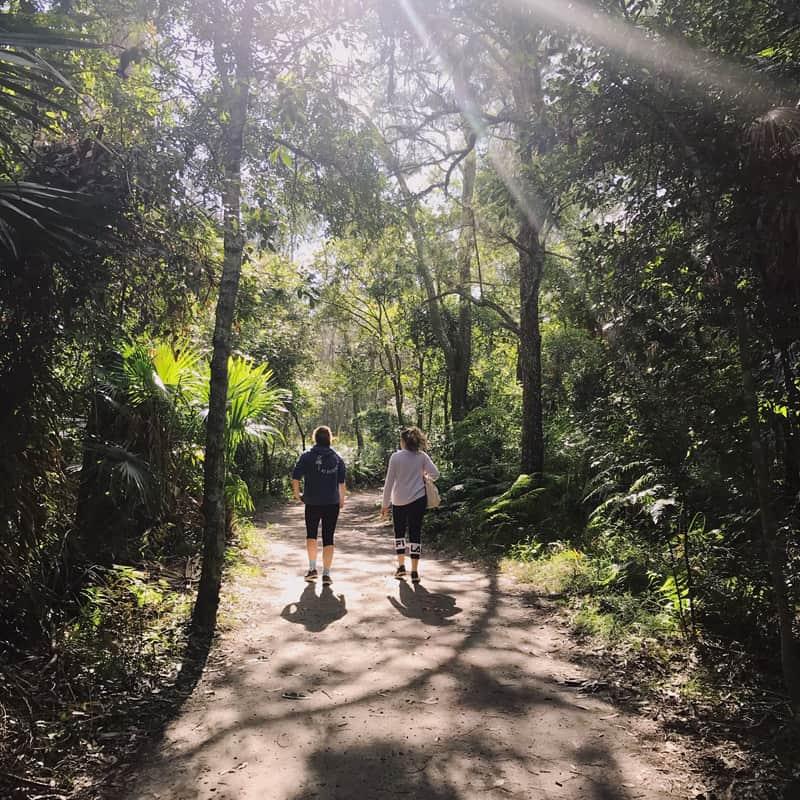 Long family walks through the bush are my new happy