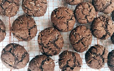 Quick chocolate biscuits that are kinda healthy