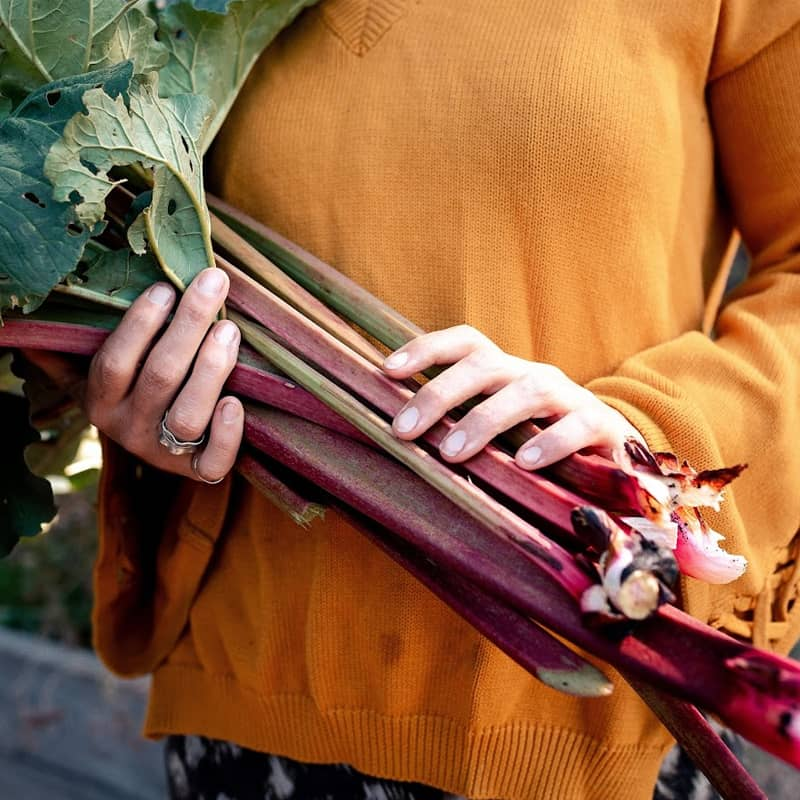 Herbs or veggies from the garden make a great homemade gift