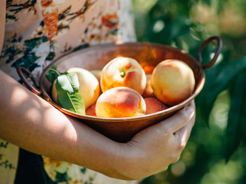 Peaches are excellent for teen gut healthPeaches are excellent for teen gut health